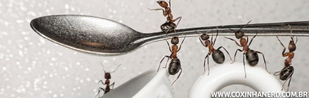 formigas na cozinha