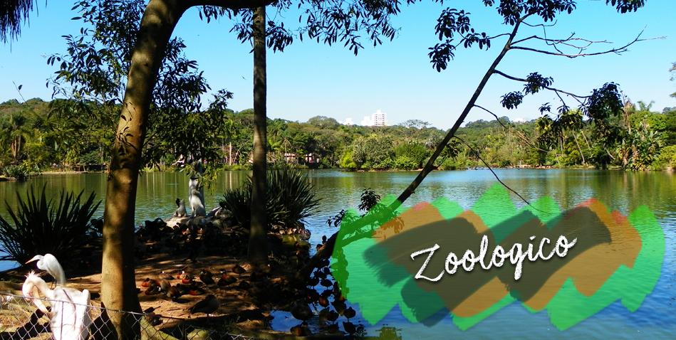 zoologico de sp