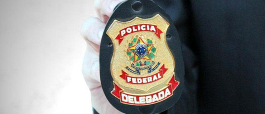 Polícia Federal e Interpol derrubam sites de pirataria!