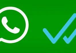 WhatsApp | Agora você poderá apagar de vez mensagens enviadas!