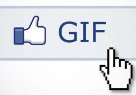 FACEBOOK   Rede social começará testes para o uso de GIFs nos comentários próxima semana!