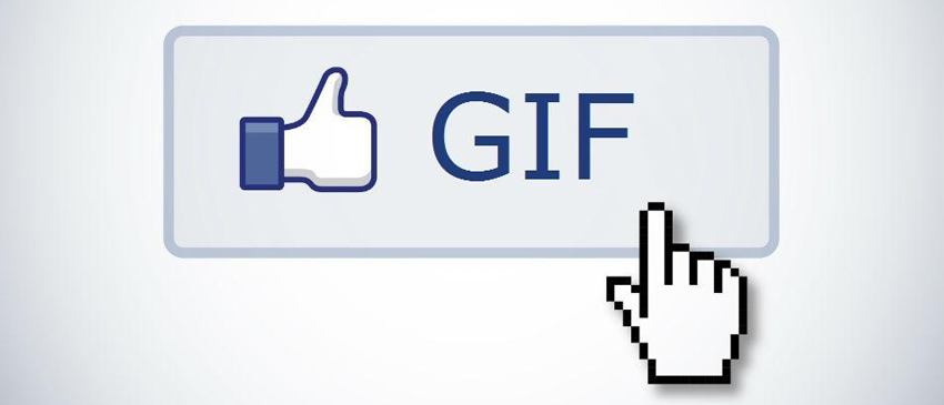 FACEBOOK | Rede social começará testes para o uso de GIFs nos comentários próxima semana!
