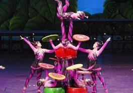 EVENTOS   A volta do Circo da China ao Brasil depois de 6 anos!