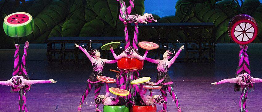 EVENTOS | A volta do Circo da China ao Brasil depois de 6 anos!