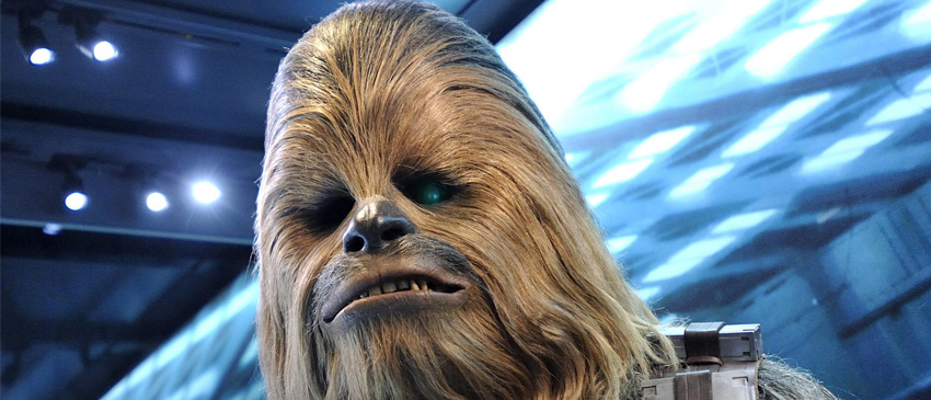 HAN SOLO | Petição online pede o ator original do Chewbacca no filme!