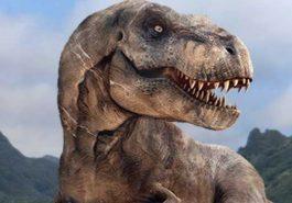 CURIOSIDADES | Descobriram um dinossauro inteiro fossilizado e ele parece uma estátua!
