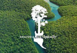 SUSTENTABILIDADE | Amazônia terá 30 mil hectares recuperados até 2023!