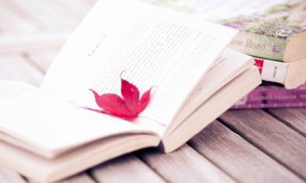 DESEJO NERD | Compre seus livros e pague o quanto puder!