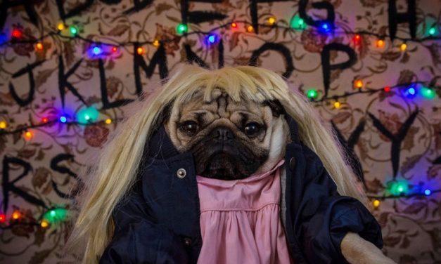 É FESTA | Melhores fantasias de Stranger Things para o Halloween!