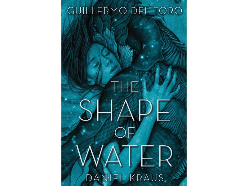 a forma da agua livro