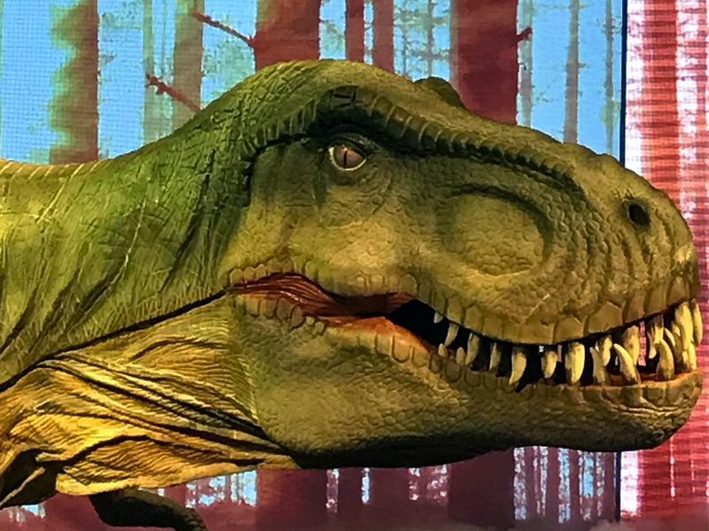 Dino Experience Megashow   Uma aventura jurássica interativa!