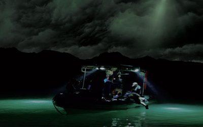 SEA OF SHADOWS | Documentário de Di Caprio fala sobre a vida marinha!