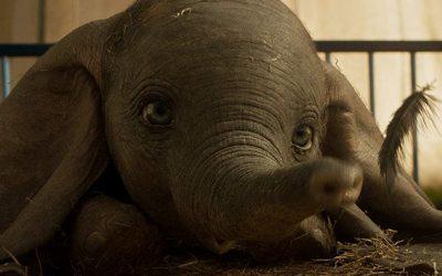 DUMBO | O nascimento do pequeno elefante em novo trailer!