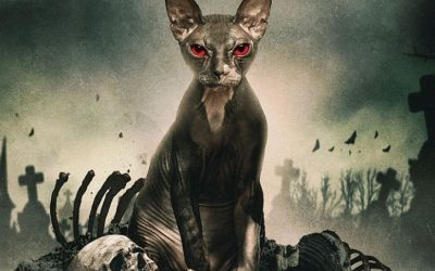 PET GRAVEYARD | Ceifeiro assombra grupo de amigos em novo trailer!