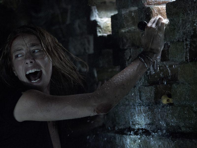 PREDADORES ASSASSINOS | Novas imagens e trailer do novo thriller!