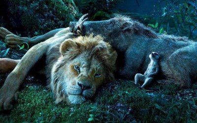 O REI LEÃO | Disney anuncia dubladores brasileiros!