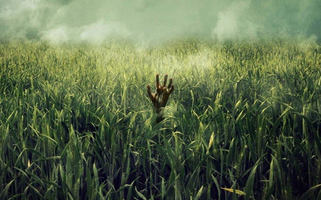 CAMPO DE MEDO | Mais um terror de Stephen King vira filme na Netflix! Veja o trailer!
