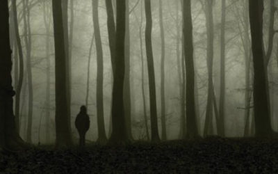 A GAROTA QUE ADORAVA TOM GORDON | Livro de Stephen King ganhará adaptação!
